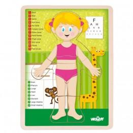 Woodyland, Човешкото тяло, момиче - дървен пъзел
