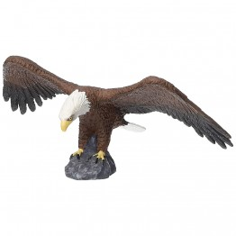 Американски Белоглав орел