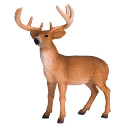 Белоопашат елен