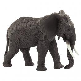 Африкански слон