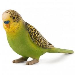 Вълнист папагал, зелен