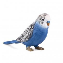 Вълнист папагал, син
